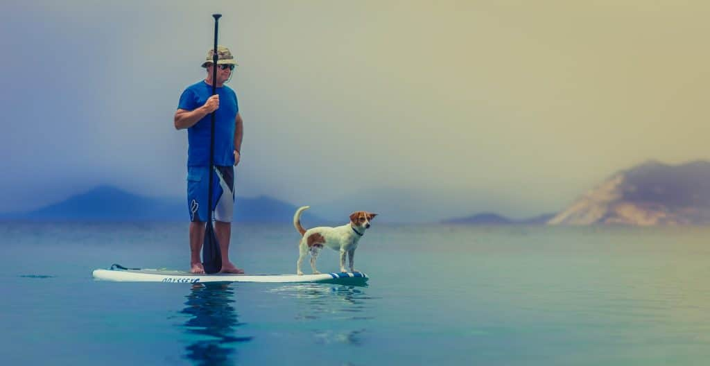 Homme sur paddle avec son chien